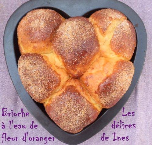 Brioche à l'eau de fleur d'oranger dans Pain,Brioches et viennoiserie dsc03305